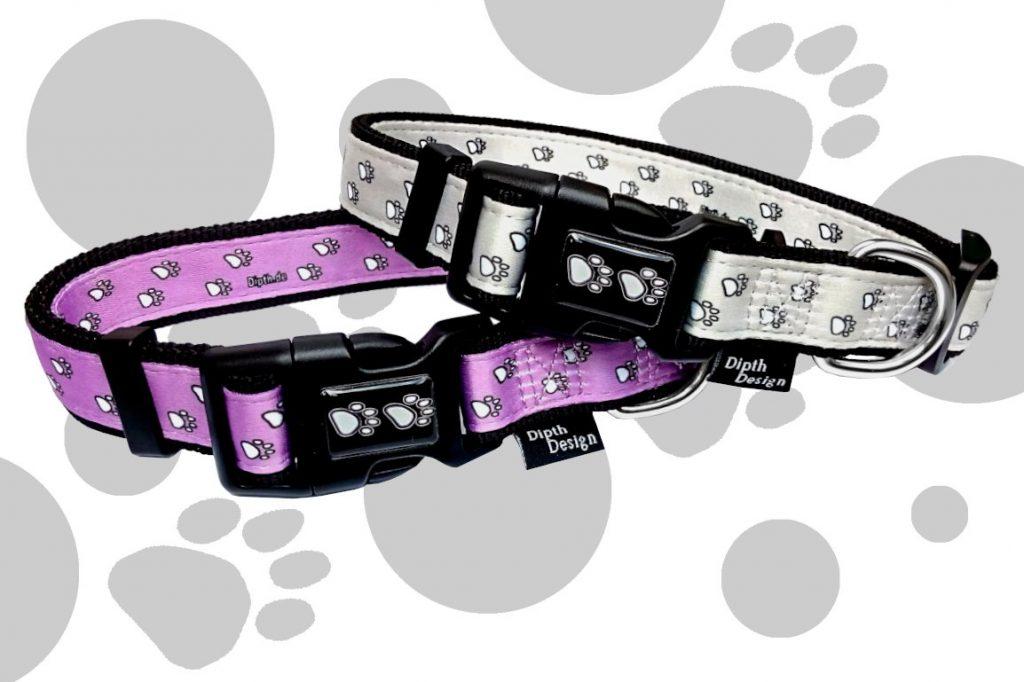 Welches Hundehalsband ist am besten?