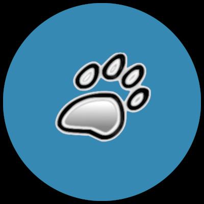 DipthDesign Hundehalsband Startup Geschichte