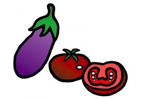 Was darf der Hund nicht fressen - Tomate und Aubergine