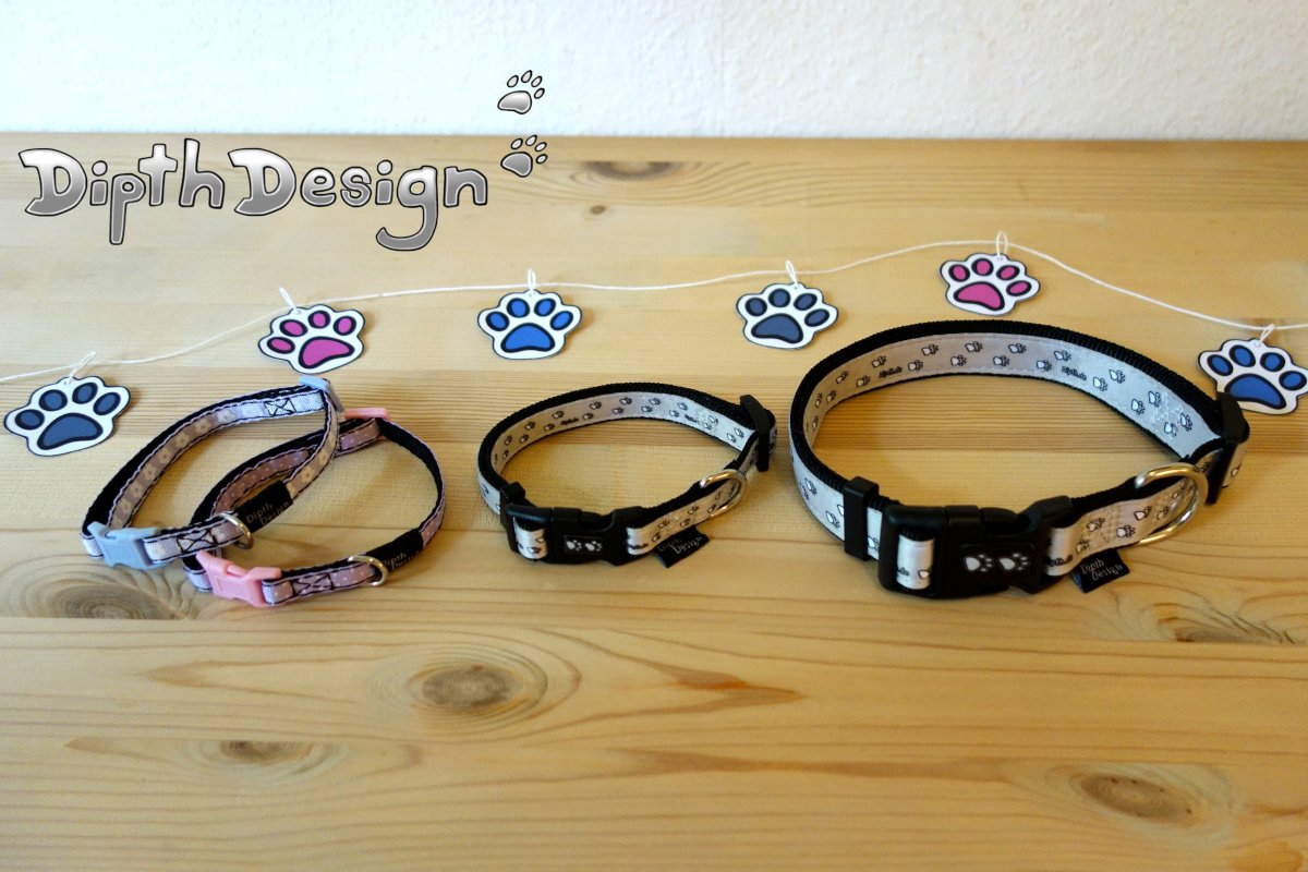 DipthDesign Dog Collar Shop When is the puppy allowed to wear a dog collar?