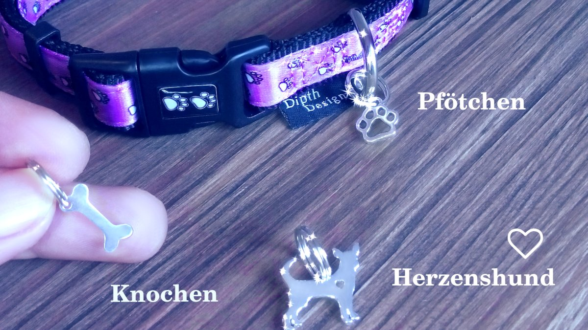 DipthDesign Hundehalsband Shop - Charms Hund