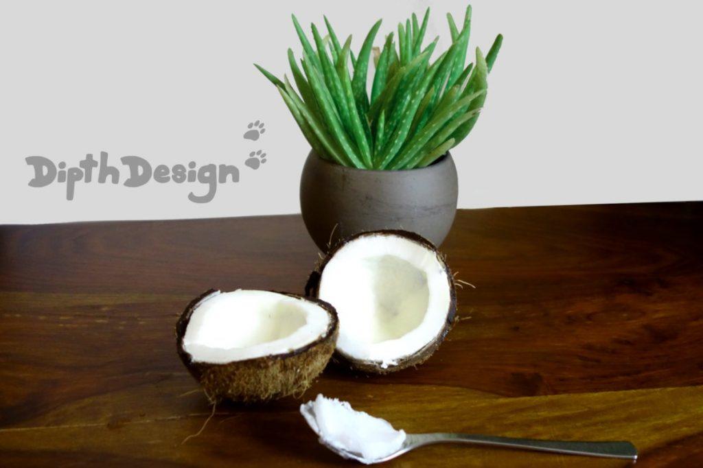 DipthDesign Hundehalsband Shop - Ist Kokosöl für Hunde gut?