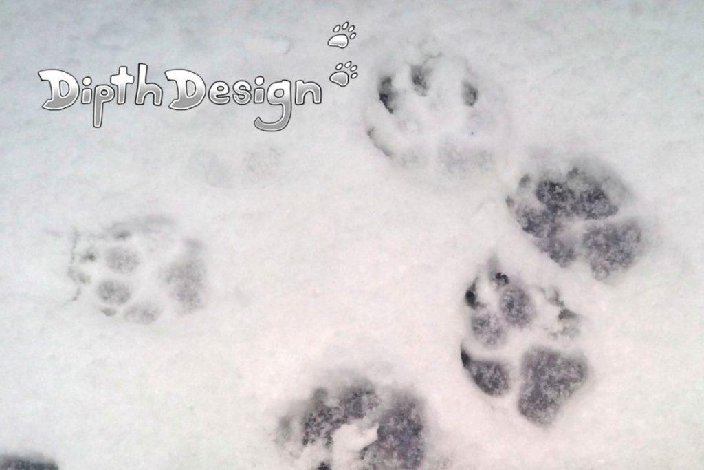 DipthDesign Hundehalsband Shop - Pfoten Pflege im Winter Schnee