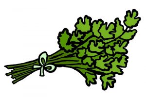 DipthDesign Dog Collar Shop - Which herbs are good for dogs - parsley