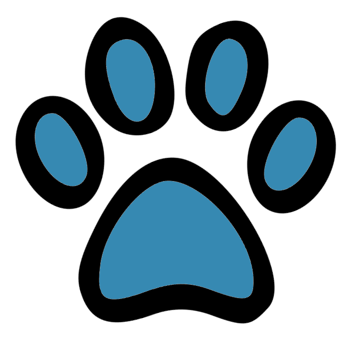 Hundehalsband Leinen Shop
