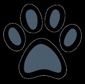 Hundehalsband Shop Pfote dunkelblau