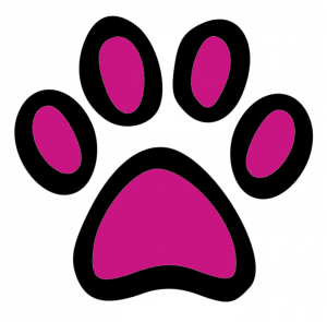 Hundehalsband Shop Pfote pink