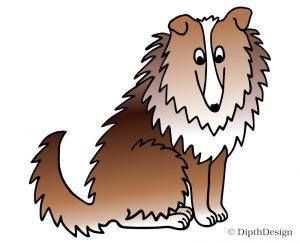 DipthDesign Design Hundehalsband Shop - Fellpflege für Hunde - Fell richtig pflegen - Langhaar Collie