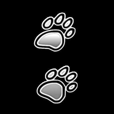 Hundehalsband Startup DipthDesign