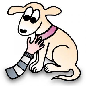 Halsband Hundehalsband besonders weich