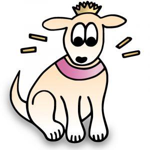 Halsband Hundehalsband Design Exklusiv Krone