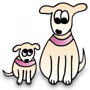 Halsband Hundehalsband große Hunde kleine Hunde